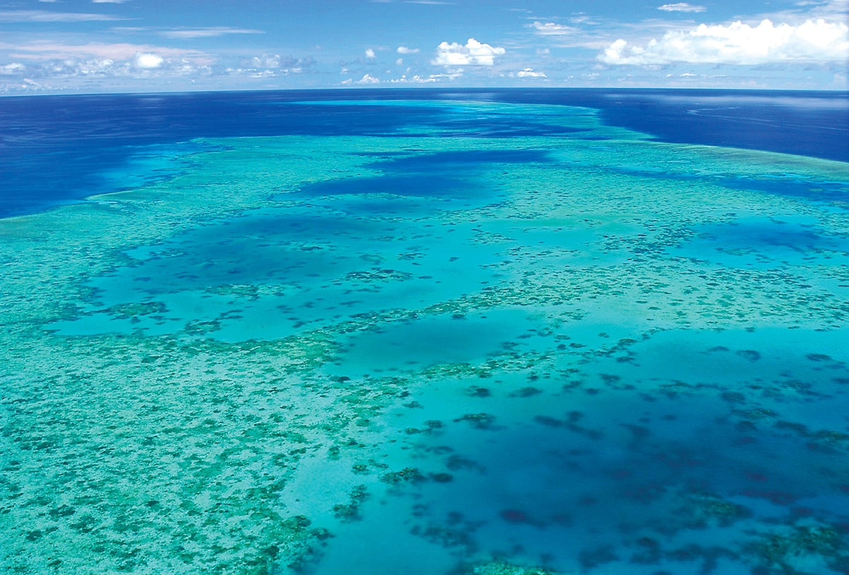 great barrier reef charter tour